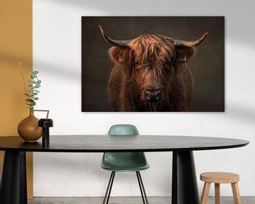 Schotse Hooglander, portret in bruin van Marjolein van Middelkoop