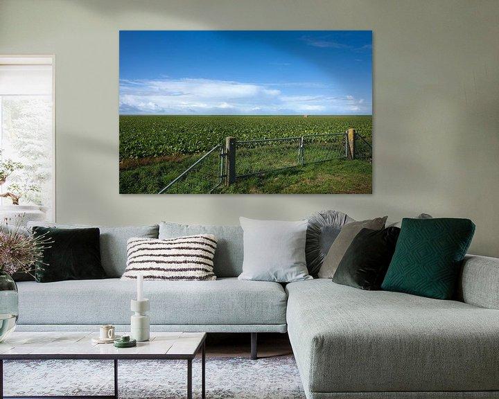 Sfeerimpressie: Noordpolder van Bo Scheeringa Photography