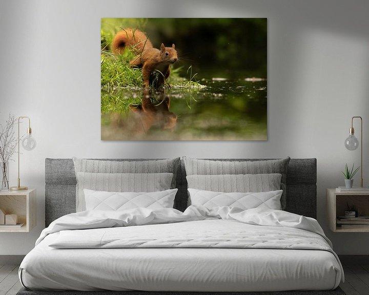 Sfeerimpressie: Eekhoorn met spiegelbeeld van Silvia Groenendijk