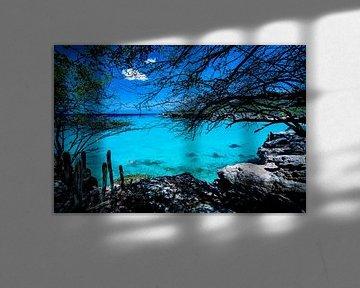 Blauw van Vivian Paola