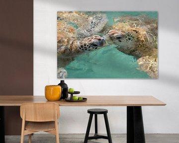Küssende Schildkröten von Vivian Paola