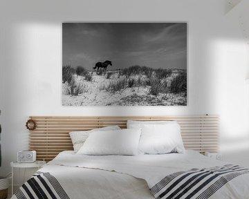 Ameland Paard in de duinen van Paul Veen