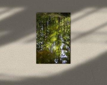 Sommer Spiegelung im Fluss