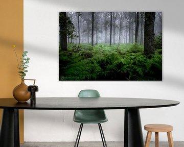 Forêt mystique sur Robbert Wille