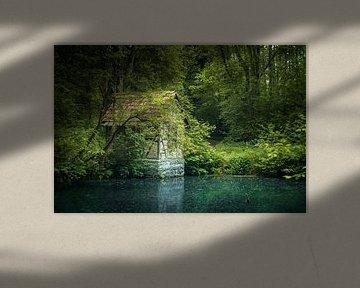 Häuschen am Waldsee