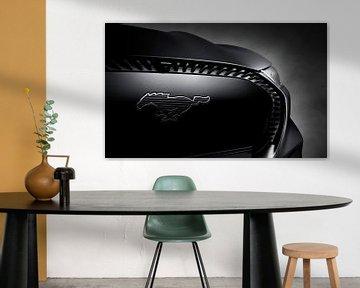 Ford Mustang Mach-E van Thomas Boudewijn