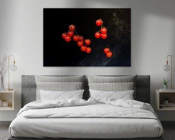Rode kerstomaten tegen een zwarte achtergrond van Wim Stolwerk