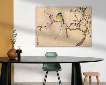 Oiseau avec fleur de prunier, Zhang Ruoai, 18e siècle
