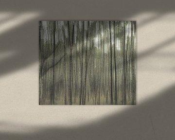 Planken Wambuis part 3 van Tania Perneel