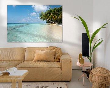 Palmboom op wit strand van Laura Vink
