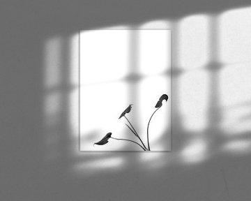 Le minimalisme nihiliste