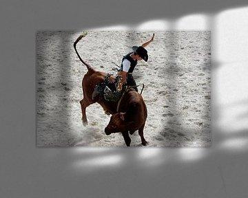 Rodeo Cowboy von Gerrit de Heus