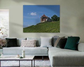 Kasteel en wijngaard van Timon Schneider