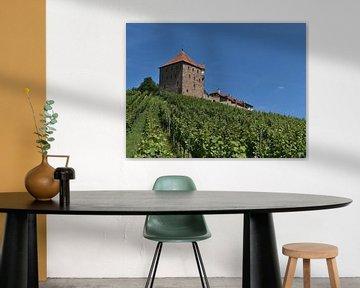 Middeleeuws kasteel Wildeck van Timon Schneider