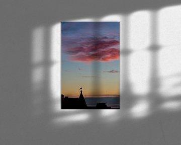 De meeuw met de mooie wolk van Bram van Elk