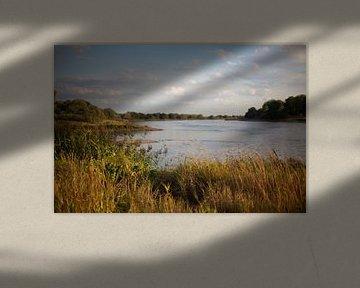 De Elbe bij Magdeburg (Saksen-Anhalt) van t.ART