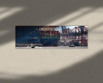 Containerterminal in de haven van Hamburg van Jonas Weinitschke