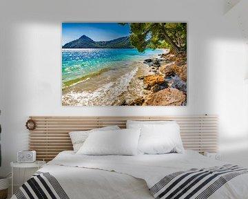 Mooi strandlandschap op het eiland Mallorca, strand Platja de Formentor, Spanje van Alex Winter