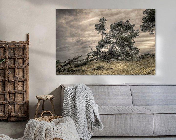 Beispiel: Baum auf Düne von Fotografie Arthur van Leeuwen