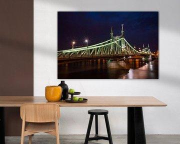 Liberty Bridge in Budapest, Hungary l Reis Fotografie van Lizzy Komen