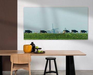 Koeien met molen sur Rob IJsselstein