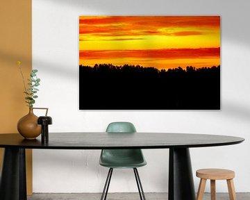 Sky of fire van Niek Traas
