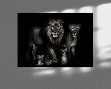 Leeuwen familie van Bert Hooijer