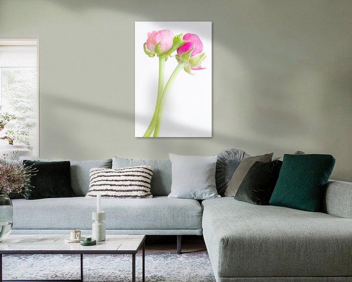 Sfeerimpressie: Roze ranonkels van Judith Borremans