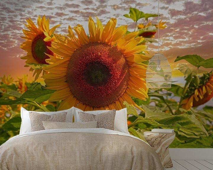 Sfeerimpressie behang: Zonnebloemen van Tonny Verhulst