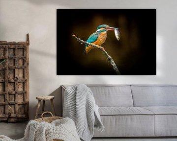 IJsvogel met visje van Peter Ruijs