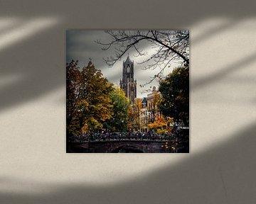 De Dom van Utrecht met de Bakkerbrug op de voorgrond (kleur)