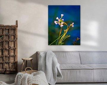 Kleine Blumen am Wasser von Bart Verdijk