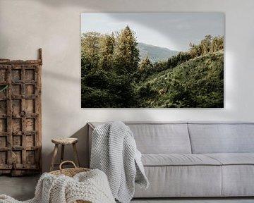 Foto des Blicks auf eine Berglandschaft in der Nähe von Mondsee | Salzburg, Österreich von Trix Leeflang