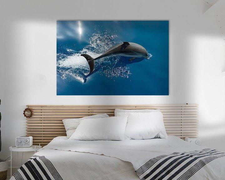 Sfeerimpressie: Duikende Dolfijn van Bob de Bruin