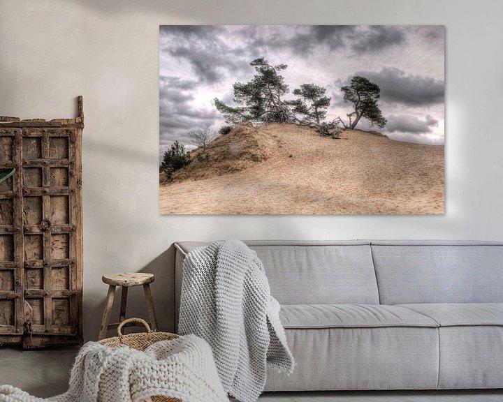 Sfeerimpressie: Denneboom op zandduin van Fotografie Arthur van Leeuwen
