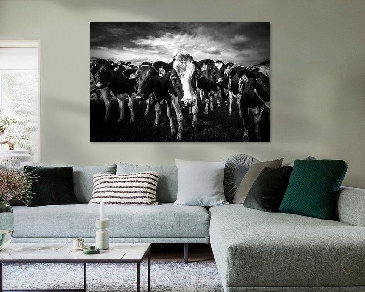 Sfeerimpressie: black and white cows van SchippersFotografie