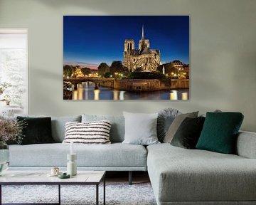 Notre-Dame kathedraal in Parijs van Thomas Rieger
