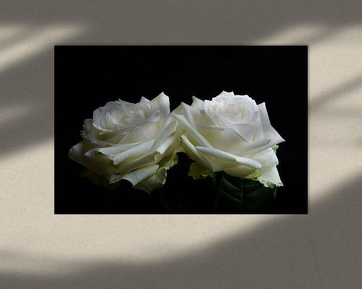 Sfeerimpressie: twee witte rozen van Arjen Schippers