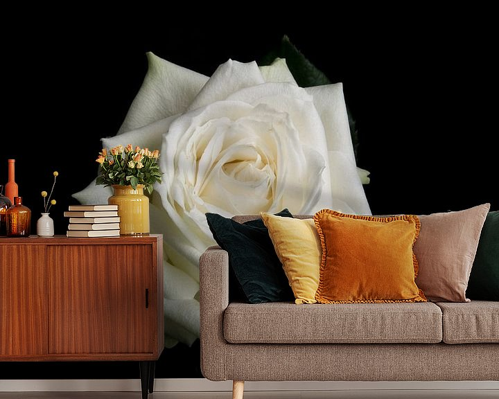 Sfeerimpressie behang: Witte roos op een zwarte achtergrond van Arjen Schippers