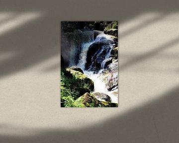 Chute d'eau de Triberg 4 sur Paul Emons