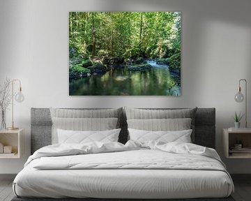Rivier in het natuurpark Vogtland van Animaflora PicsStock