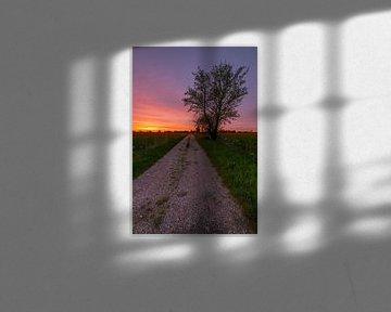 Chemin vers le soleil