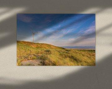 Windmühle von Jan Koppelaar