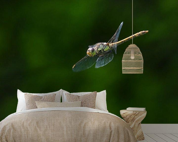 Sfeerimpressie behang: Libelle / Dragonfly van Henk de Boer