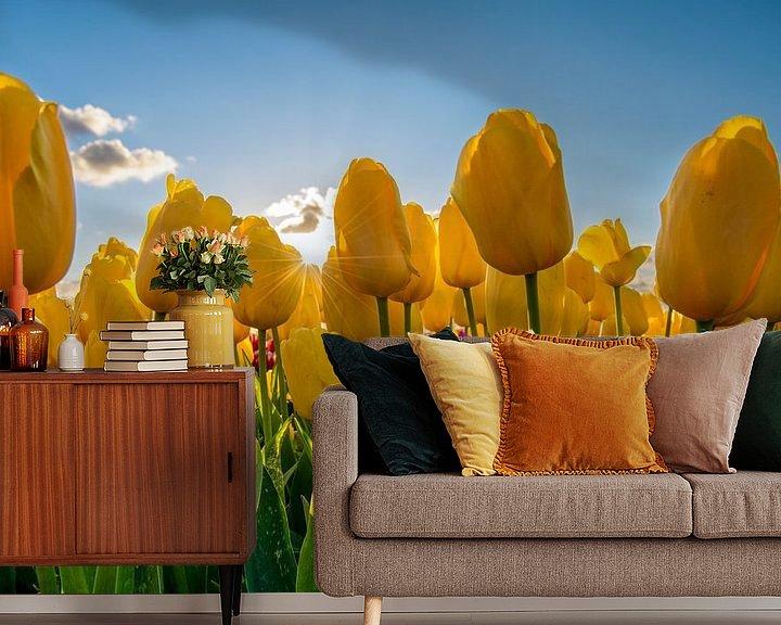 Impression: Tulipes jaunes avec ciel bleu sur Fotografie Ronald
