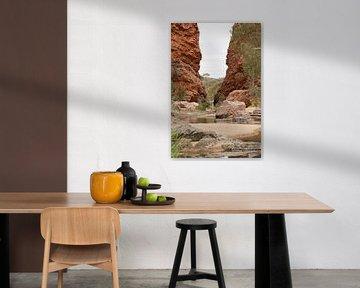 Een rode kloof, de Glen Helen Gorge, in de West MacDonnell Ranges in portrait van Henk van den Brink