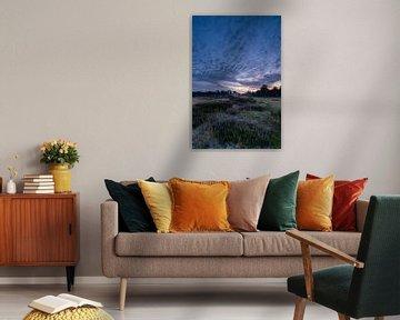 Lever de soleil sur le champ de bruyère Heidestein Utrechtse Heuvelrug. sur Peter Haastrecht, van