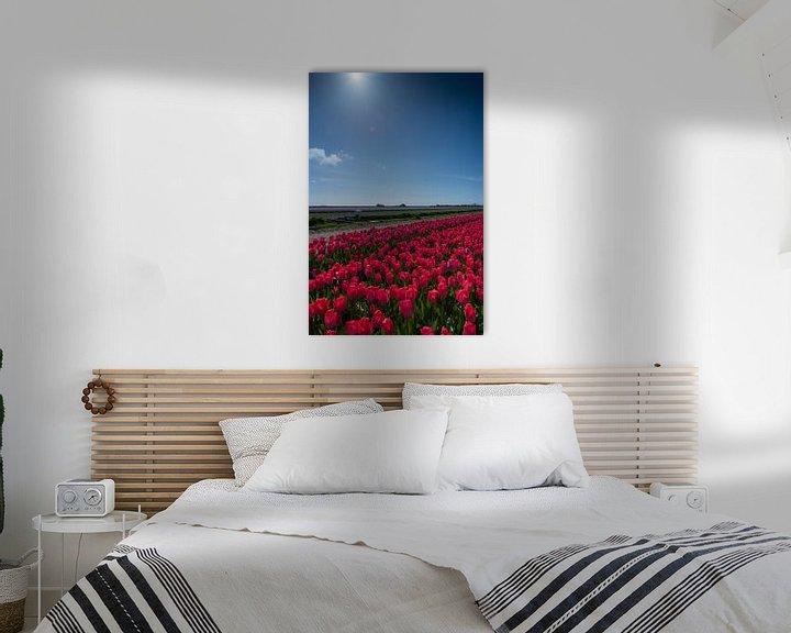 Beispiel: veld met rode tulpen von Arjen Schippers