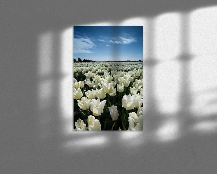 Sfeerimpressie: veld met witte tulpen van Arjen Schippers