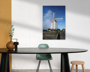 De Blennerville Windmolen van Babetts Bildergalerie